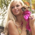 164817-paris-hilton-passion-chihuahua